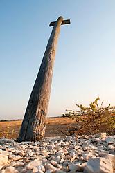 Il complesso produttivo delle saline è situato nel comune italiano di Margherita di Savoia (nome dato dagli abitanti in onore alla regina d'Italia che molto si adoperò nei confronti dei salinieri) nella provincia di Barletta-Andria-Trani in Puglia. Sono le più grandi d'Europa e le seconde nel mondo, in grado di produrre circa la metà del sale marino nazionale (500.000 di tonnellate annue).All'interno dei suoi bacini si sono insediate popolazioni di uccelli migratori e non, divenuti stanziali quali il fenicottero rosa, airone cenerino, garzetta, avocetta, cavaliere d'Italia, chiurlo, chiurlotello, fischione, volpoca..Un palo segnaletico lungo i sentieri calpestabili che separano i bacini l'uno dall'altro.