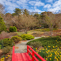 Mytoi Japanese Botanical Garden on Chappaquiddick Island, in Martha's Vineyard, Massachusetts.<br /> <br /> Mytoi Japanese Botanical Garden on Chappaquiddick Island photography images are available as museum quality photography prints, canvas prints, acrylic prints, wood prints or metal prints. Fine art prints may be framed and matted to the individual liking and decorating needs:<br /> <br /> https://juergen-roth.pixels.com/featured/mytoi-japanese-botanical-garden-juergen-roth.html<br /> <br /> Good light and happy photo making!<br /> <br /> My best,<br /> <br /> Juergen