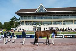 Lee Pearson, (GBR), Zion - Horse Inspection - Alltech FEI World Equestrian Games™ 2014 - Normandy, France.<br /> © Hippo Foto Team - Jon Stroud<br /> 25/06/14