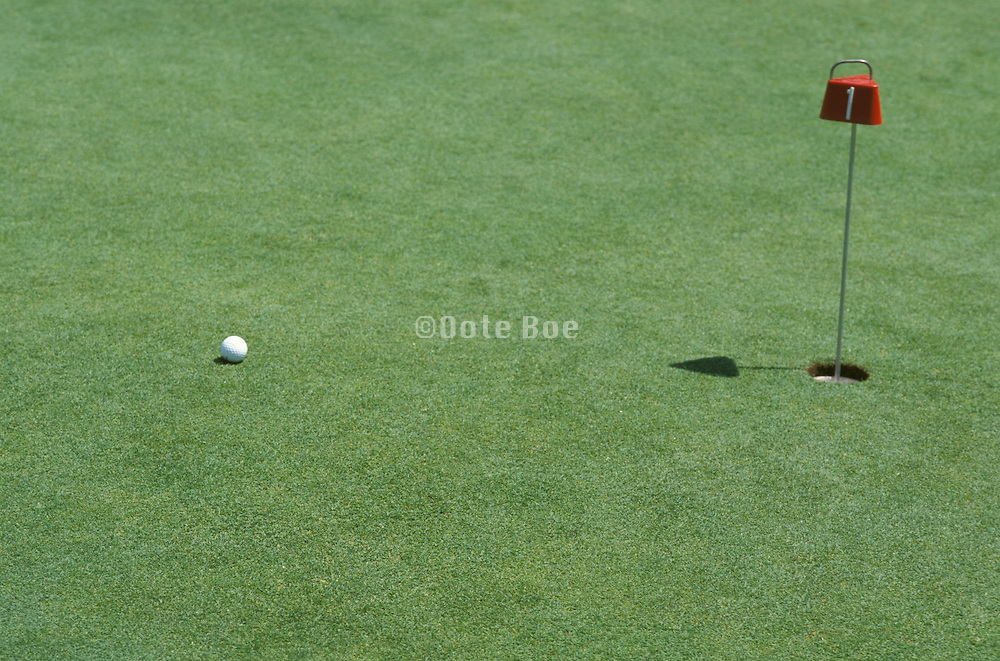 golf ball near hole on green