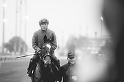 November 1-3, 2018: Breeders' Cup Horse Racing World Championships. Enable and jockey Frankie Dettori