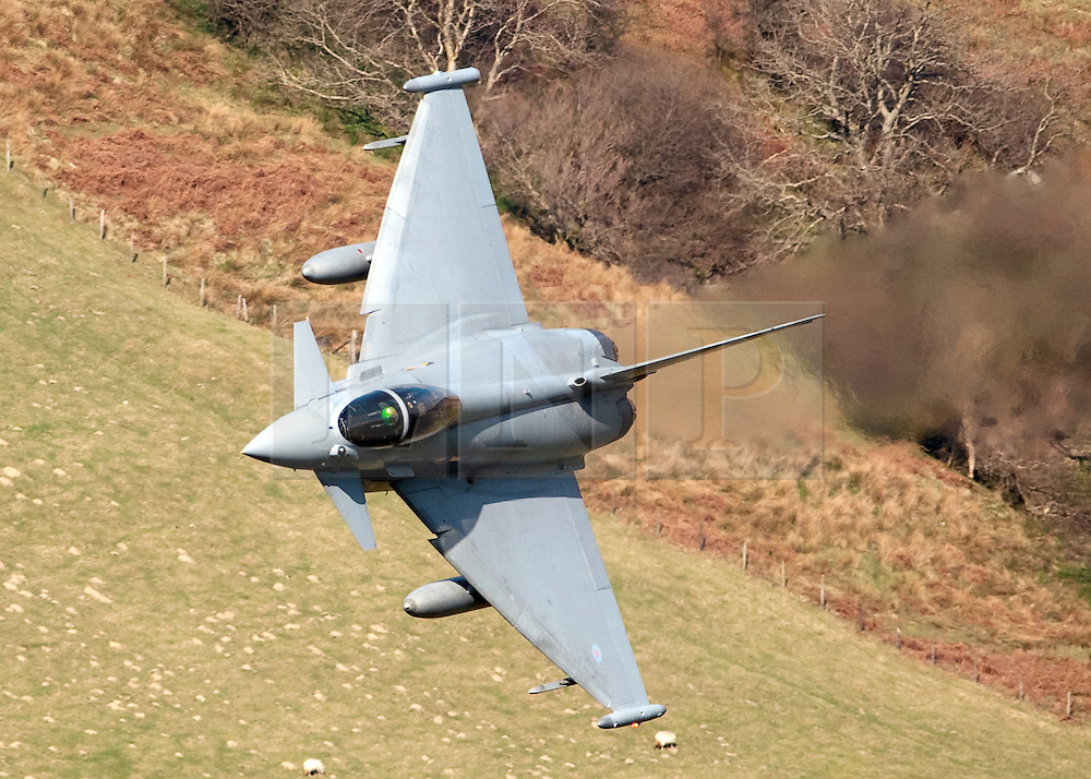 """© London News Pictures FILE PICTURE. The Typhoon F2. 18/03/11. UK, French and US warplanes are set to go into action over Libya after the UN backed """"all necessary measures"""", short of an invasion, to protect civilians. Picture credit should read: Andrew Chittock/LNP"""
