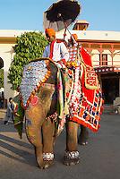 Inde, Rajasthan, Jaipur, le City Palace // India, Rajasthan, Jaipur, the City Palace