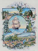 British imports: illustration 1892.