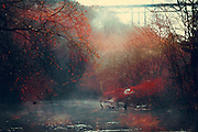 Morning fog over a river in backlight - texturized photograph