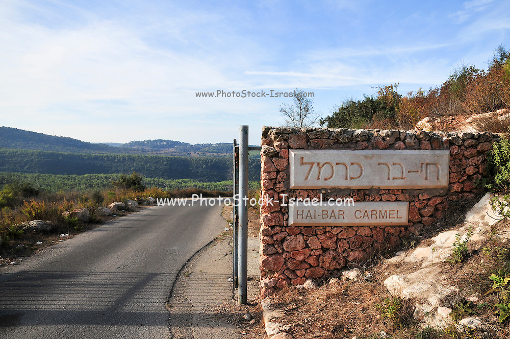 Israel, Carmel Mountains the Hai-Bar animal sanctuary