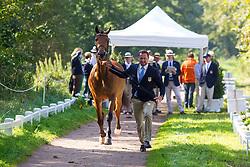 Chester Weber, (USA), Boris W, Boy W, Para, Splash, Uniek - Horse Inspection Driving - Alltech FEI World Equestrian Games™ 2014 - Normandy, France.<br /> © Hippo Foto Team - Leanjo de Koster<br /> 25/06/14