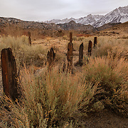 Abandoned Homestead Fence - Buttermilks - Eastern Sierra