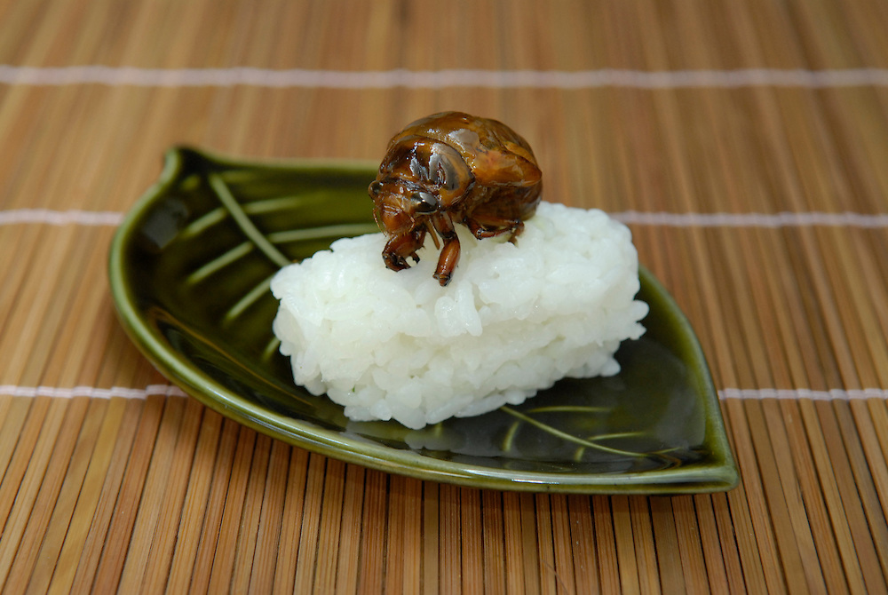 """Japanese cicada sushi. Tokyo resident Shoichi Uchiyama is the author of """"Fun Insect Cooking"""". His blog on the topic gets 400 hits a day. He believes insects could one day be the solution to food shortages, and that rearing bugs at home could dispel food safety worries."""