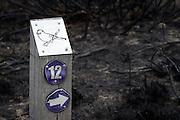 Wildlife trail marker on burnt heathland, Upton Heath, Dorset, UK.