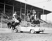 0301-554A. Trick riders, Phoenix Rodeo, Arizona 1950s