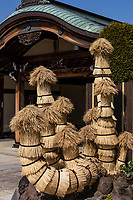 Japanese komo-maki or komomaki is wrapping trees with a rice straw mat to protect them from the elements.  This is often seen in Japanese gardens in early winter to protect the trees. This method is mistakenly regarded as protecting pine trees from the cold of winter, but is in fact protection from insects that infect pine trees. When spring comes, this mat is removed from the trunk to be burnt along with the insects that have burrowed inside the straw.