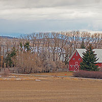 Winter gloom hovers over a farm in the Gallatin Valley, near Bozeman, Montana.