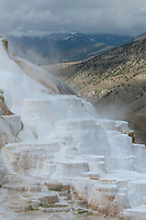 Canary Spring travertine deposits. Mammtoth Hot Springs, Yellowstone National Park