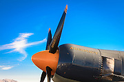 """""""Argonaut"""", Hawker Sea Fury, Reno Air Races."""