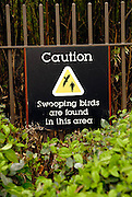 "Sign warning of presence of ""swooping birds"". Darling Harbour, Sydney, Australia"