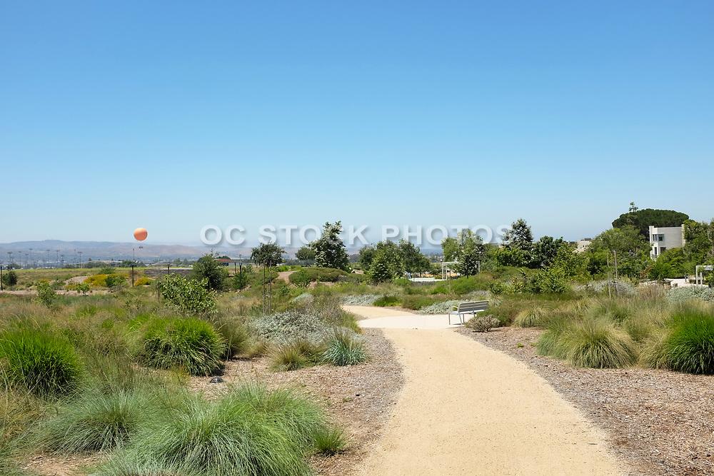 Decomposed Crushed Granite Walking Path