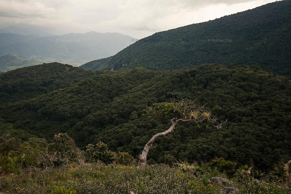 El CALVARIO, MEXICO - AUGUST 4, 2015: View of a landscape nearby to the community of El Calvario, Mexico.  Rodrigo Cruz for The New York Times