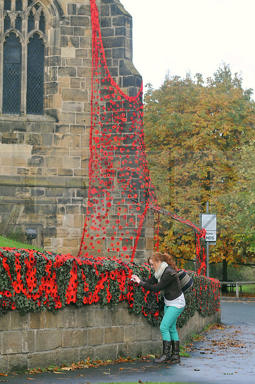 Licensed to London News Pictures 07/11/2016<br /> More than thirty-five thousand knitted and crocheted poppies have been tied to church railings and walls around Thirsk, North Yorkshire.<br /> The town's 'yarnbombers' have done it to mark Remembrance Day.<br /> The poppies have been knitted by ladies in the town and helped by knitters around the world.<br /> The knitted and crocheted flowers can be seen at St Mary's Church in Thirsk and St Oswald's Church in Sowerby and along the Remembrance Day parade route.<br /> Picture shows St Mary's, Thirsk<br /> Photo Credit: Sam Atkins/LNP