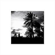 Silhouette of a minaret and palms at sunset.