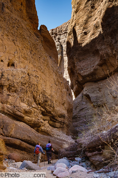 Hikers descend into a slot along the Ladder Canyon and Painted Canyon Loop Trail, Mecca Hills Wilderness, managed by BLM's Palm Springs-South Coast Field Office, near Mecca, California, USA. The Mecca Hills are deeply-eroded sedimentary badlands north of the Salton Sea, bounded on the west by the San Andreas Fault. Several parallel faults split the region. The original sediments were primarily lake and Colorado River deposits, later covered with alluvium as the uplifting hills eroded.