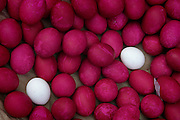 Dyed salty eggs, are sold on the street in Manila, Philippines (From a photographic gallery of street food images, in Hungry Planet: What the World Eats, p. 131)