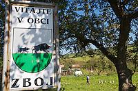 Farmer guarding a flock of geese at the entrance of the village Zboj, close to Nova Sedlica, Slovakia.