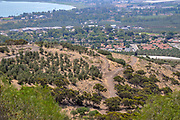 Israel, Lower Galilee, view of the Sea of Galilee from west. Golan Heights in the background