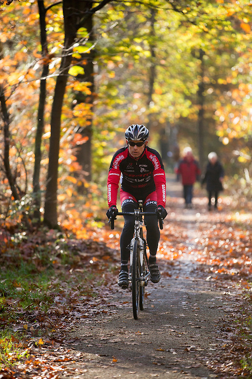 Bij Austerlitz rijdt een wielrenner in het bos op een mooie herfstdag.<br /> <br /> Cyclists enjoy the beautiful autumn weather in the woods near Austerlitz.