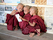 Novice monks at the monastery after a Shinbyu Novice Ceremony on 23rd March 2016 in Mo Bye village, Shan State, Myanmar. In Myanmar, it is customary for boys to enter the monastery as a Buddhist novice between the age of ten and 20 years old although they can be as young as four, for at least one week.