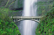 Multnomah Falls and bridge, Mount Hood National Forest, Columbia River Gorge National Scenic Area, Oregon USA