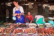Mar. 13, 2009 -- VANG VIENG, LAOS: A barbecues meat vendor in the Hmong market in Phou Khoun, Laos. Phou Khoun is about halfway between Vang Vieng and Luang Prabang.  Photo by Jack Kurtz