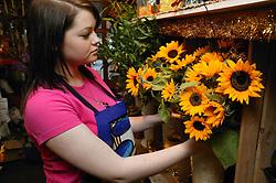 Florist arranging flowers for sale in flower shop,