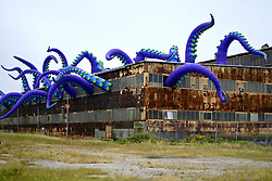 October 8, 2018 - Philadelphia, Pennsylvania, U.S. - Inflatable tentacles of a commissioned art-work by British artist Pedro Estrellas and Filthy Luker reach from the windows of a rusty warehouse and into the sky at the Navy Yard, in South Philadelphia. (Credit Image: © Bastiaan Slabbers/NurPhoto/ZUMA Press)