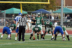 12 October 2013:  Rob Gallik and Devonte Jones line up behind center Naill Mulcahy during an NCAA division 3 football game between the North Park vikings and the Illinois Wesleyan Titans in Tucci Stadium on Wilder Field, Bloomington IL