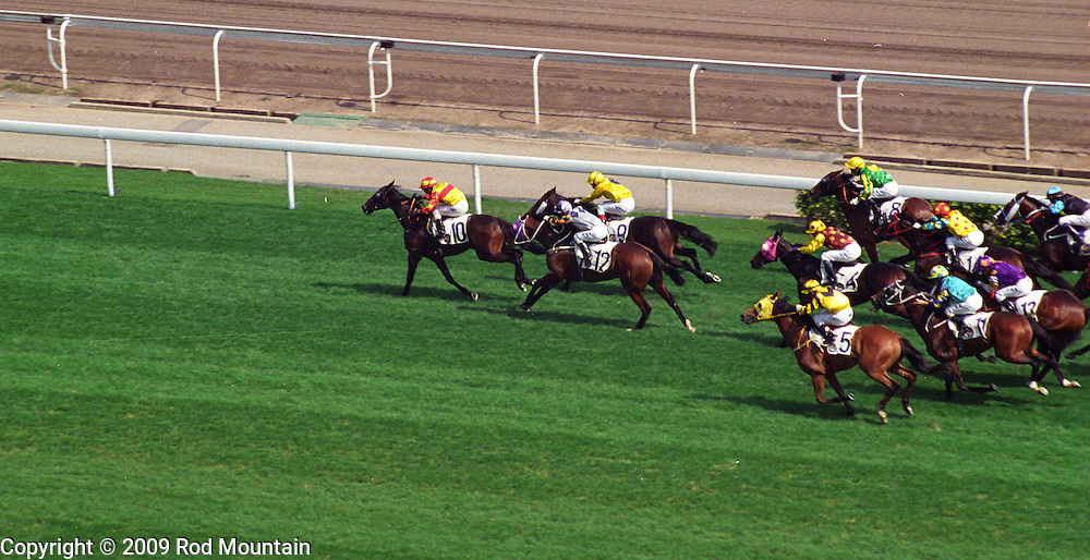 The Sha Tin jockeys take their horses to the limit while attempting to catch up to number 10 in the lead.