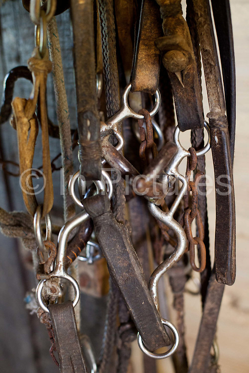 Detail shot of saddles and stirrups, in the stables. Working Gaucho Fazenda in Rio Grande do Sul, Brazil.