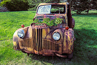 Rusted yellow pickup truck with flowers in the engine compartment.