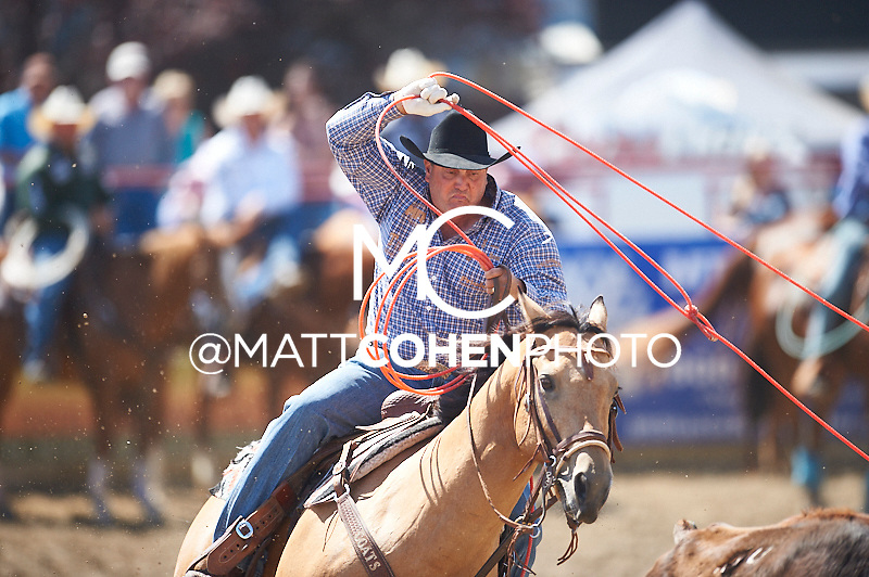 Team roper Rich Skelton of Llano, TX competes at the Redding Rodeo in Redding, CA.<br /> <br /> <br /> UNEDITED LOW-RES PREVIEW<br /> <br /> <br /> File shown may be an unedited low resolution version used as a proof only. All prints are 100% guaranteed for quality. Sizes 8x10+ come with a version for personal social media. I am currently not selling downloads for commercial/brand use.