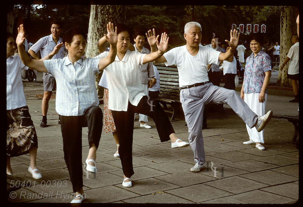 Class practices t'ai chi at sunrise in Jin An Park in central Shanghai. China