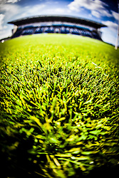 The strands of the new plastic pitch at Falkirk Stadium, for the Scottish Championship game v Hamilton. The woven GreenFields MX synthetic turf and the surface has been specifically designed for football with 50mm tufts compared with the longer 65mm which has been used for mixed football and rugby uses.  It is fully FFA two star compliant and conforms to rules laid out by the SPL and SFL.<br /> ©Michael Schofield.