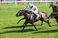 ZAAKI (3) ridden by Ryan Moore and trained by Sir Michael Stoute winning The Group 3 Sky Bet & Symphony Group Strensall Stakes over 1m 1f (£100,000)  during the Ebor Festival at York Racecourse, York, United Kingdom on 24 August 2019.