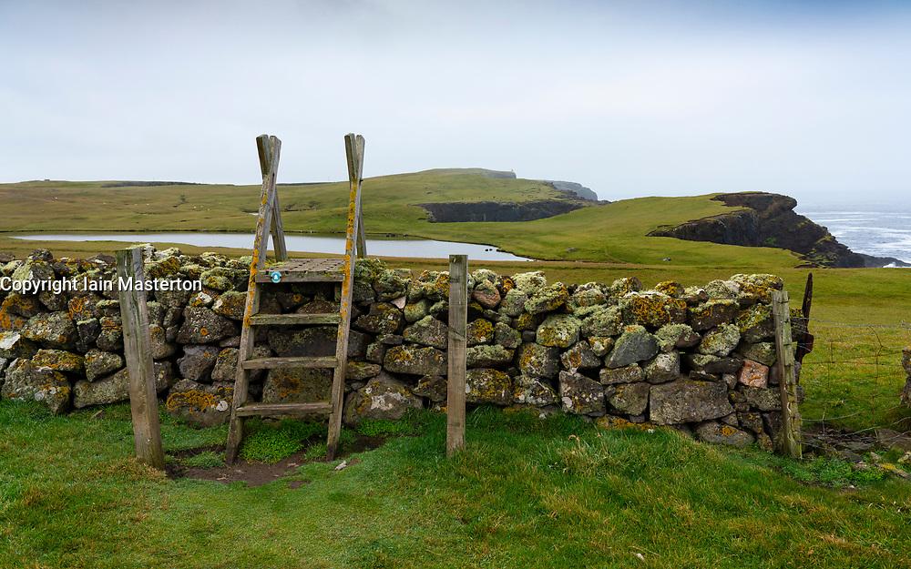Footpath and wall on coast at Eshaness at Northmavine , north mainland of Shetland Islands, Scotland, UK