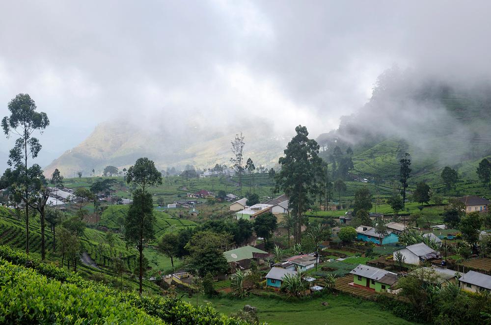 Dambatenne village, Lipton tea plantations, Southern Highlands, Sri Lanka