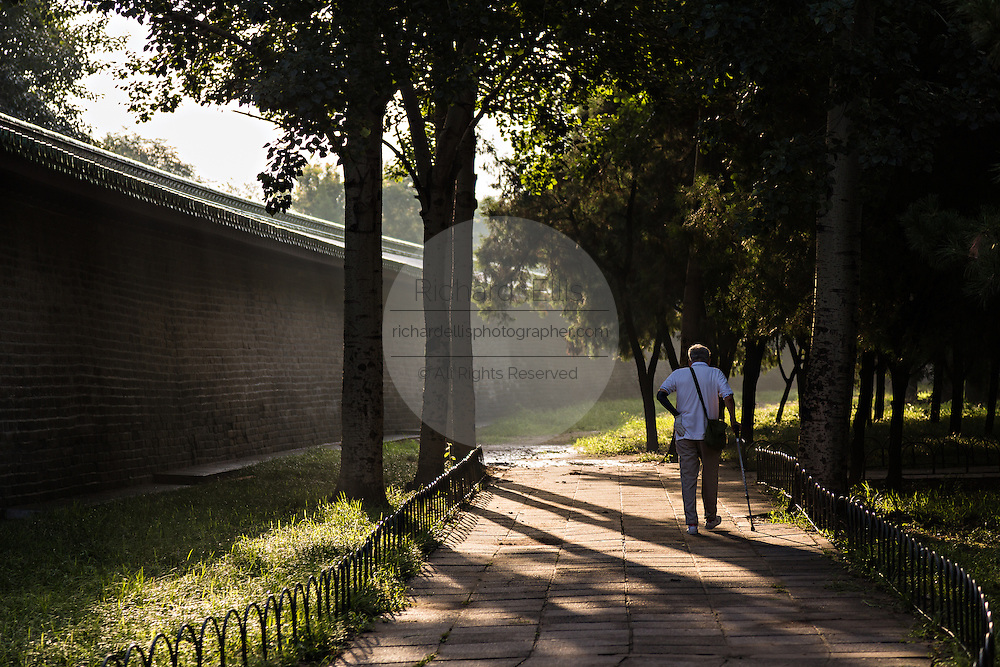 An elderly Chinese man talks an early morning walk in the Temple of Heaven Park during summer in Beijing, China