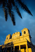 Costa Rica, San Jose, Metroplitan Cathedral, National Cathedral, Central Park, Parque Central, Palm Tree
