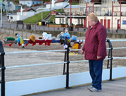 © Licensed to London News Pictures.<br /> 22/05/15<br /> <br /> Saltburn, UK. <br /> <br /> A woman stops to look at the knitted figures tied to railings after the Saltburn Yarn Bombers struck again during the early hours of the morning and attached their latest creations to the the pier at the beach. The knitted figures that represent, on the year marking the 150th anniversary, characters from Lewis Carroll's classic children's book Alice's Adventures in Wonderland are the latest creations from this group whose identities still remain a mystery.<br /> <br /> Photo credit : Ian Forsyth/LNP
