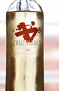 Bottle of Cruzdiabolo, semi-sweet sparkling wine Bodega Del Anelo Winery, also called Finca Roja, Anelo Region, Neuquen, Patagonia, Argentina, South America