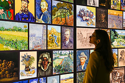 "© Licensed to London News Pictures. 06/02/2020. LONDON, UK. A staff member views the exhibition. Preview of the ""Meet Vincent Van Gogh"" experience on the South Bank.  Created by the Van Gogh Museum in Amsterdam, the touring exhibition recreates Van Gogh's life in an interactive and multisensory experienc.  The show is open to the public 7 February to 21 May 2020.  Photo credit: Stephen Chung/LNP"