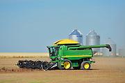 Lentil harvest. Combine and grain bins<br /> Land<br /> Saskatchewan<br /> Canada